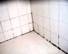 Best way to remove mold and mildew from tile grout for How to clean bathroom grout mold